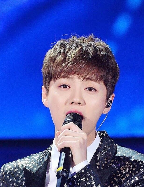 Luhan CCTV Chinese New Year