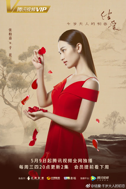 Zhang Bai Jia Character poster The Love Knot: His Excellency