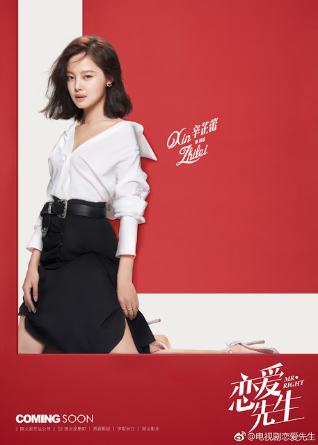 Finding Mr. Right c-drama character poster