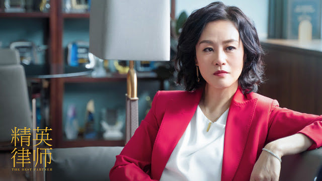 the best partner china legal drama vivian wu